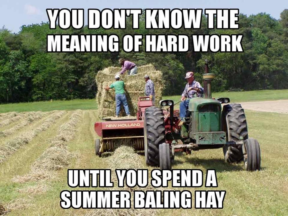 Image result for farm memes